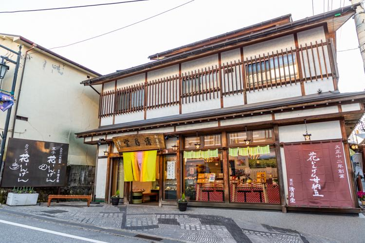 Japanese Traditional Inn #3 - Hanaingen