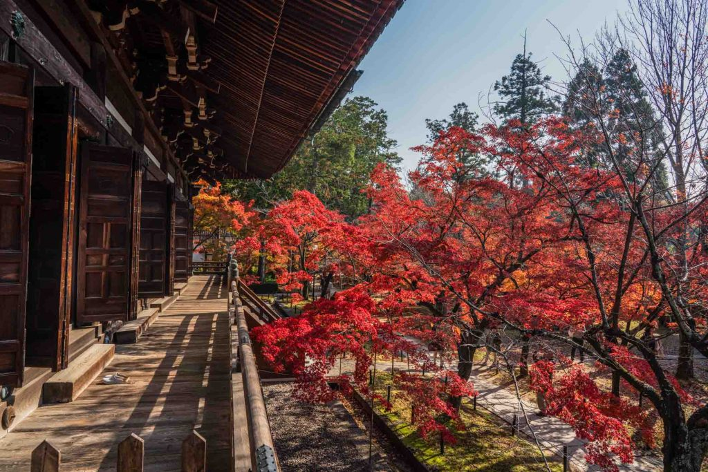 Best Autumn Leaves Spots in Kyoto #7 - Shinnyo-do