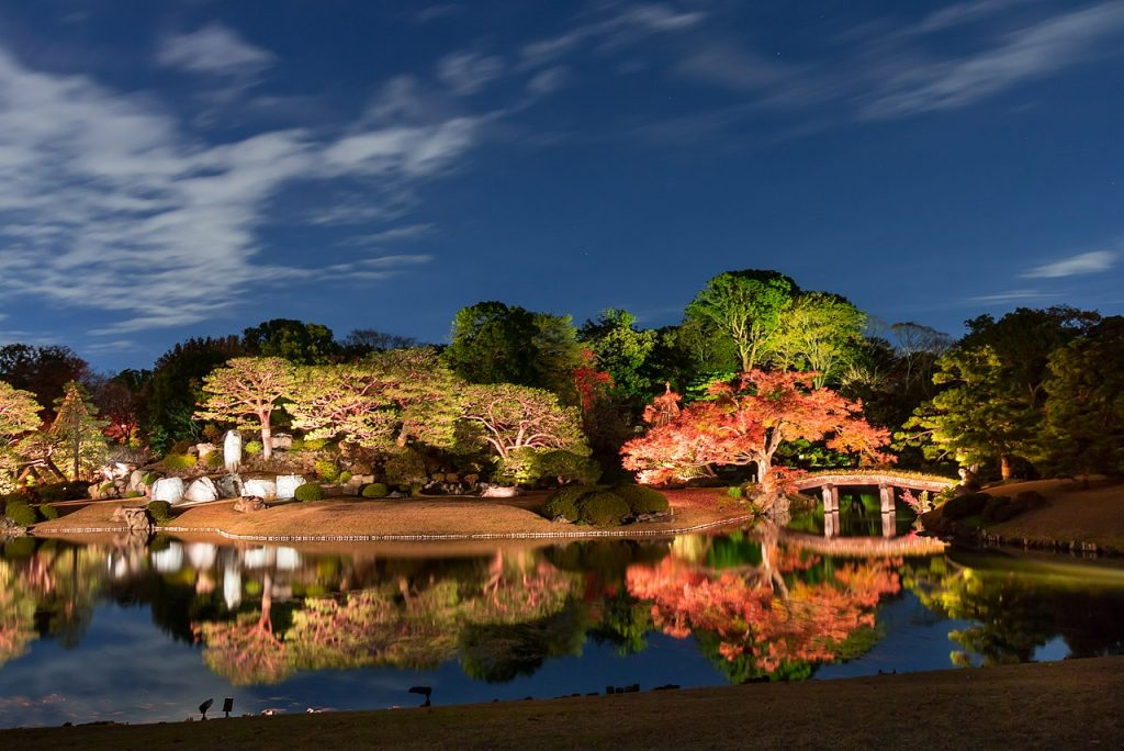 Best Autumn Leaves Spots in Tokyo #1 - Rikugien (Rikugi Gardens) 4 Illumination