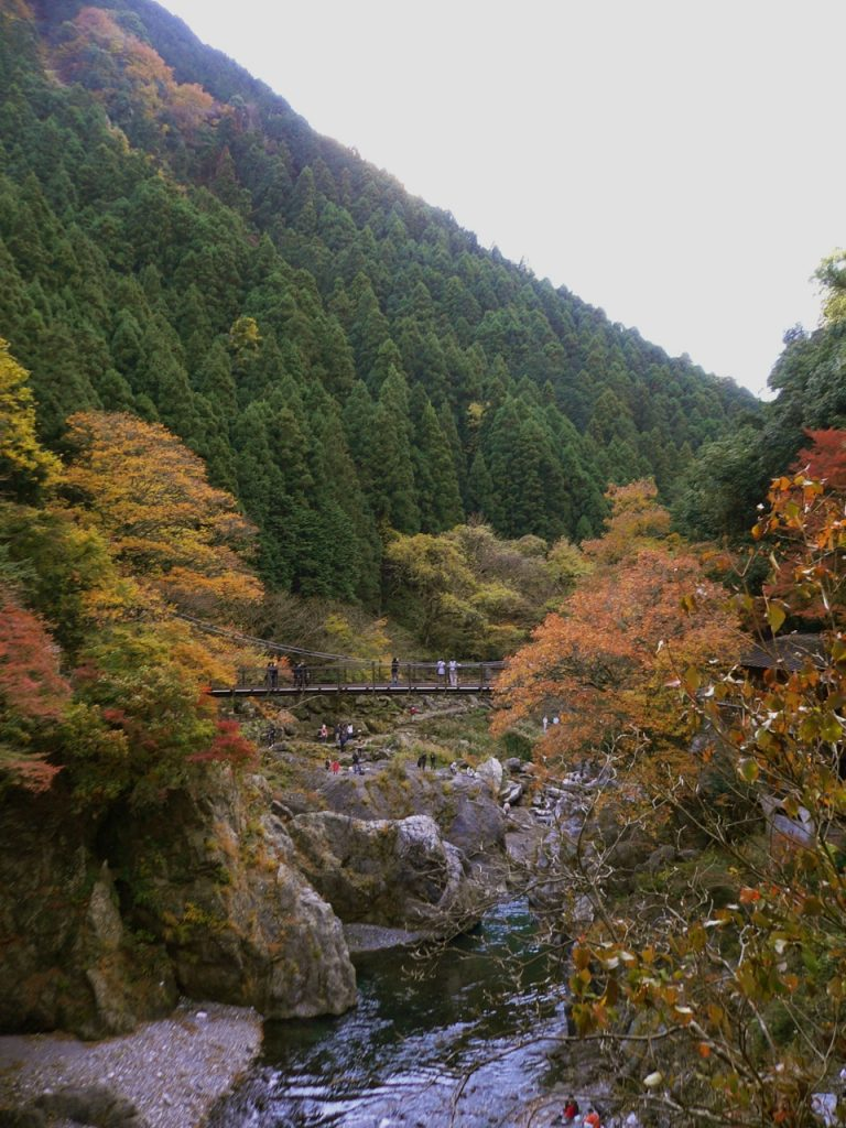 Things to do in Okutama Japan #2 - Hatonosu Ravine 1