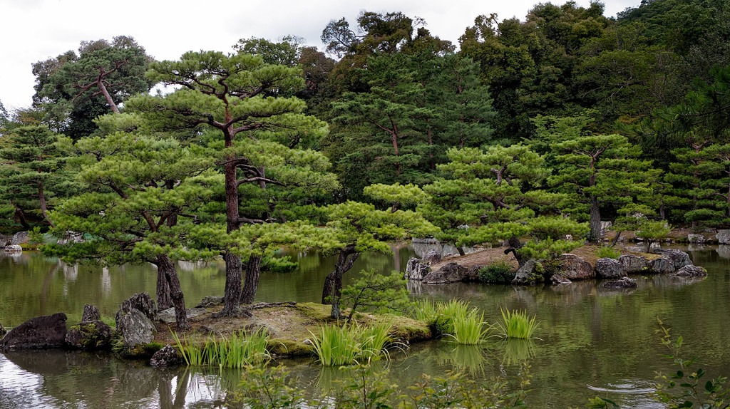 Best japanese gardens in Japan #10 - Kinkakuji Temple (Kyoto)