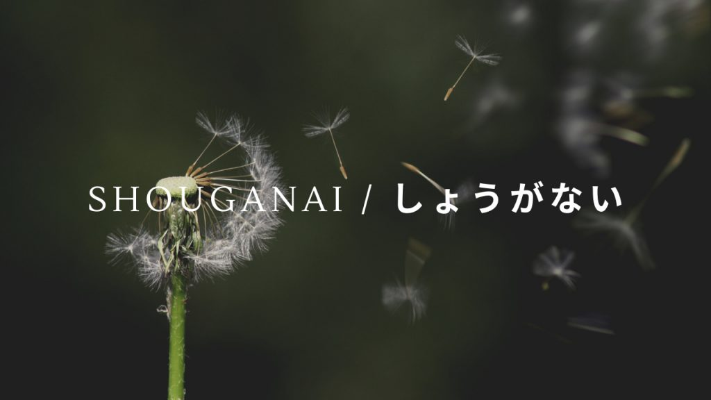 Best Japanese Words Expressions Shouganai